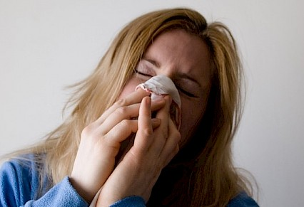 Rise in flu death toll
