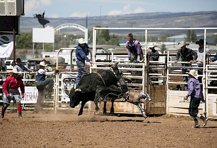 Rodeo & Truck Show Big Win